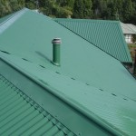 Roof Painting -044