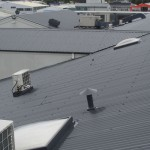 Roof Painting 2-038